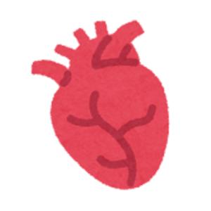 フルオロキノロン系薬剤と大動脈解離・大動脈瘤・アキレス腱炎について